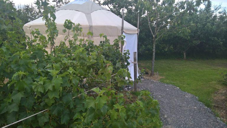 Yurt For Sale - Ireland