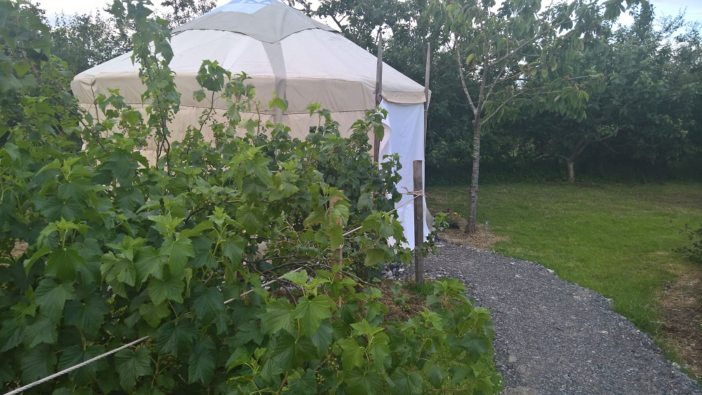 4 Metre Yurt For Sale – County Offaly