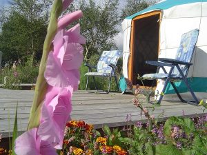 Other types of glamping accommodation -